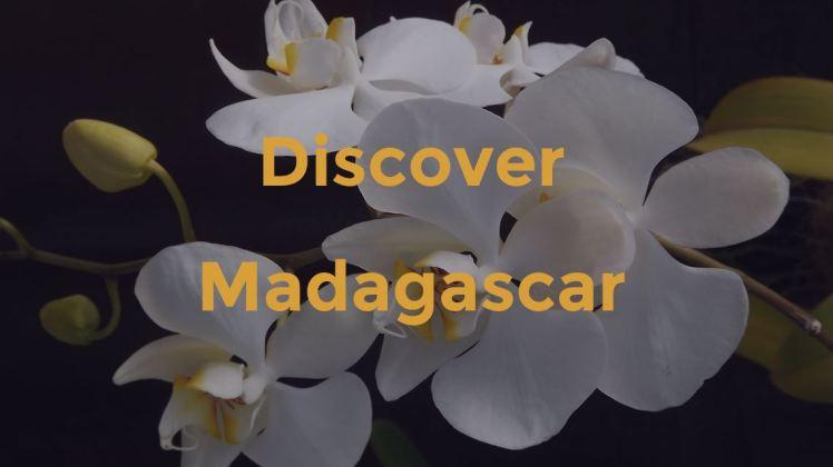 DiscoverMadagascar