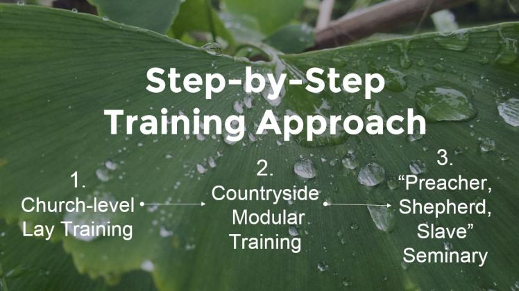 Step-by-Step_Training_Approach