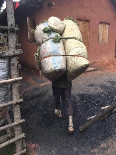 Antananarivo (30)