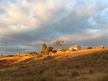 Seminary Land (4)